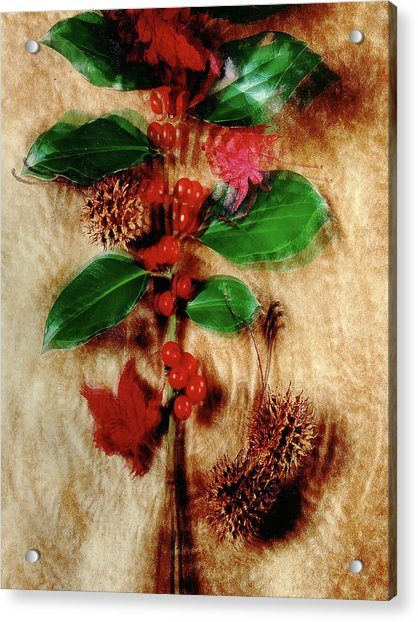 Red Holly Spinning Acrylic Print