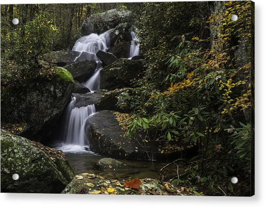 Red Leaf Waterfalls Acrylic Print