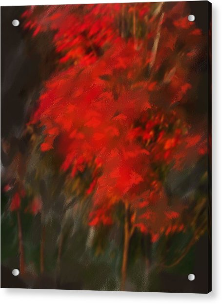 Red Tree Acrylic Print by Claire Whitehead