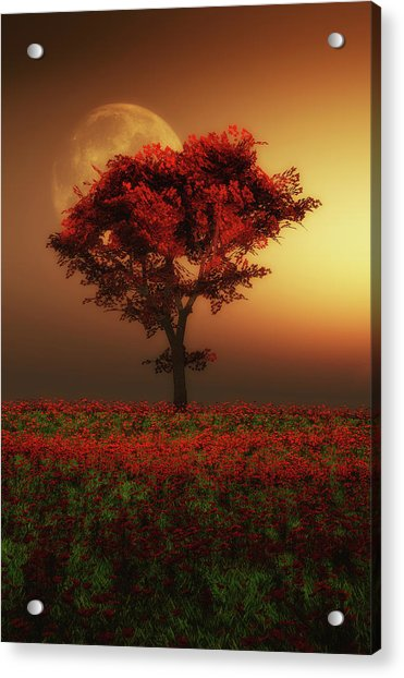 Acrylic Print featuring the painting Red Tree In The Evening by Jan Keteleer