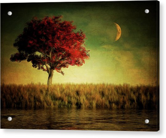 Acrylic Print featuring the painting Red Tree With Moonrise by Jan Keteleer