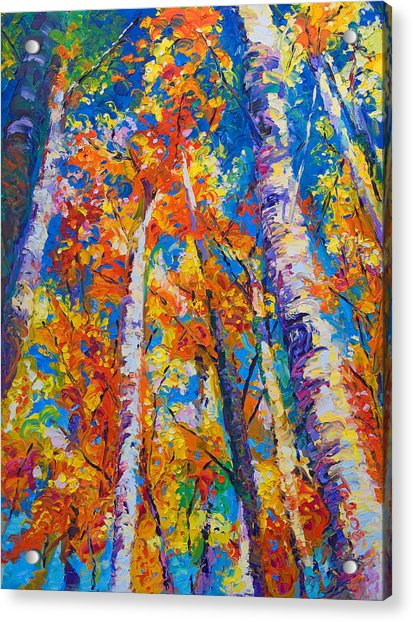 Acrylic Print featuring the painting Redemption - Fall Birch And Aspen by Talya Johnson