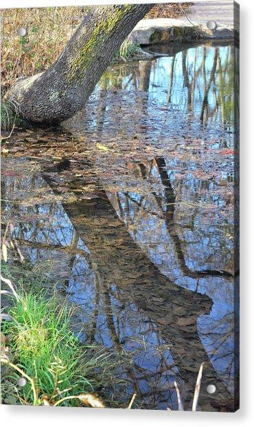 Reflections I Acrylic Print
