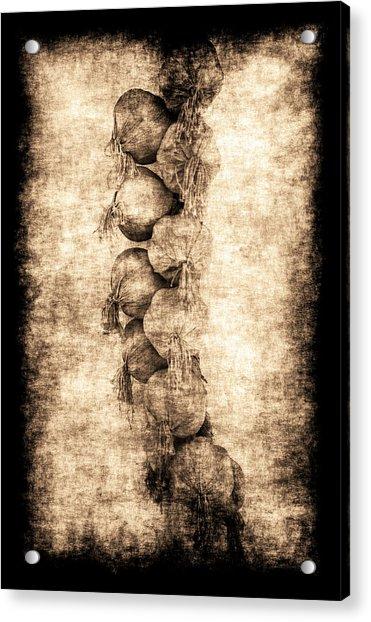 Renasiaance Garlic Acrylic Print