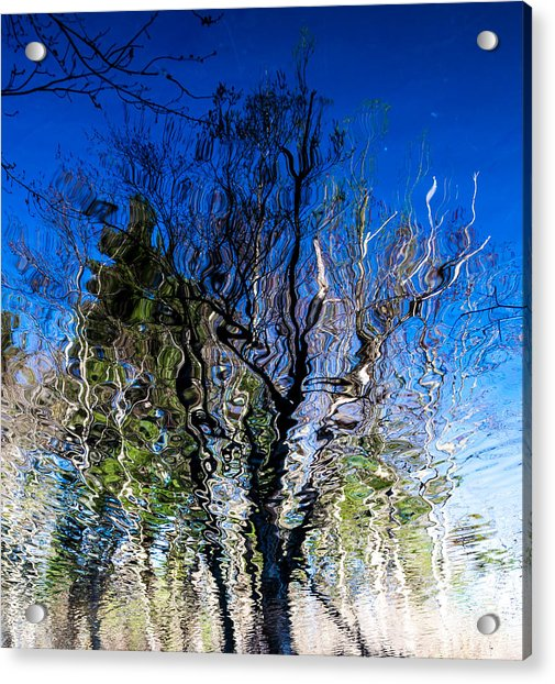 Rippled Reflection Acrylic Print