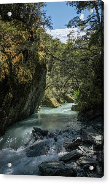 Rob Roy Stream New Zealand Acrylic Print