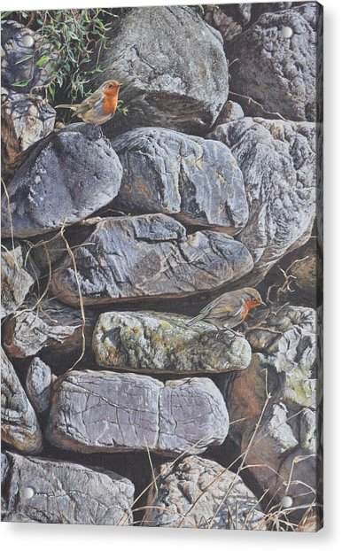 Acrylic Print featuring the painting Robins by Alan M Hunt