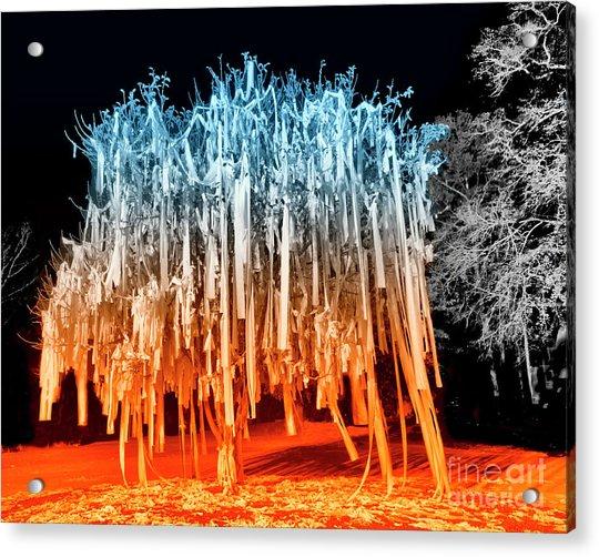 Rolled Tree Orangenblue Acrylic Print
