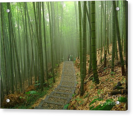 Romantic Bamboo Forest Acrylic Print