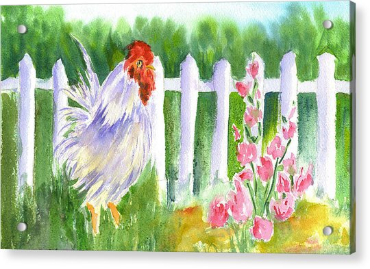 Rooster 05 Acrylic Print by Ruth Bevan