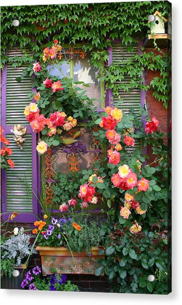 Rosey Window Ii Photograph By Kelly S Andrews