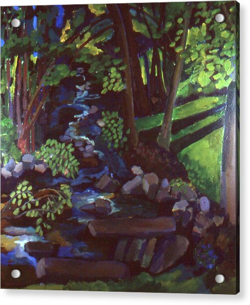 Runoff Stream Acrylic Print by Doris  Lane Grey