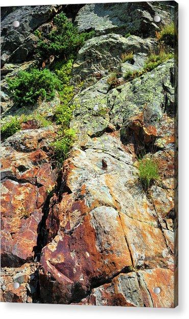 Rusty Rock Face Acrylic Print
