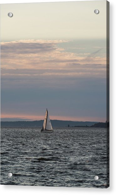 Sailing In The Puget Sound Acrylic Print