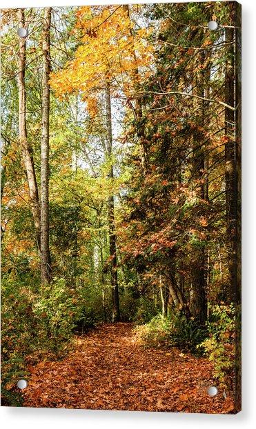 Seasonal Change Acrylic Print