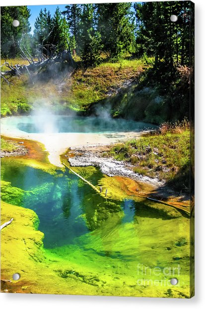 Seismograph Pool In Yellowstone Acrylic Print