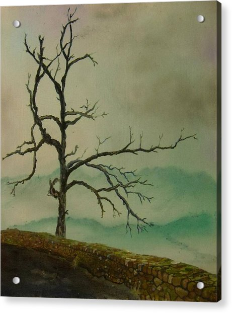 Sentinel Of The Shenandoah  Acrylic Print