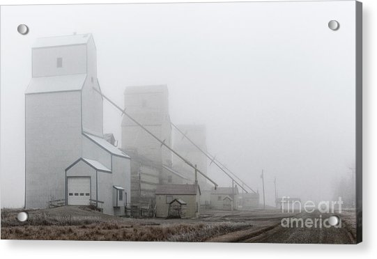 Sentinels In The Fog Acrylic Print