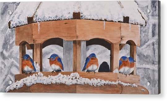 Shelter From The Storm Acrylic Print