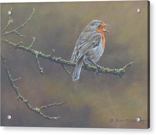 Acrylic Print featuring the painting Singing Robin by Alan M Hunt