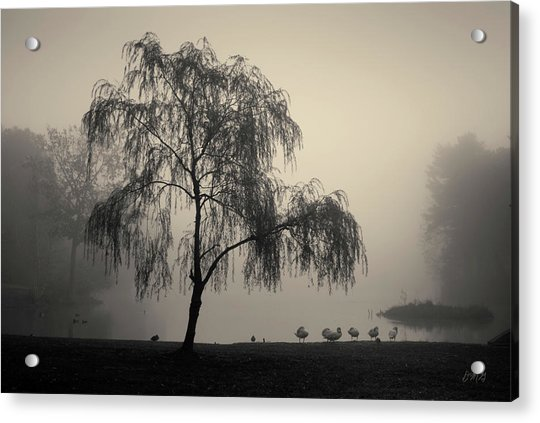 Slater Park Landscape No. 1 Acrylic Print