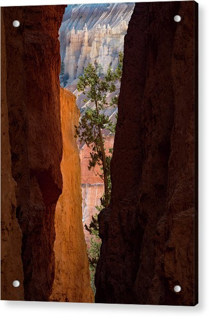 Sliver Of Bryce Acrylic Print