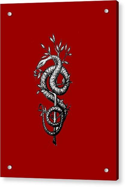 Snake Of Wisdom Acrylic Print