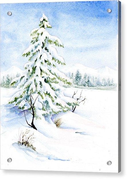 Snow On Evergreens Acrylic Print