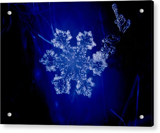 Snowflake On Blue Acrylic Print