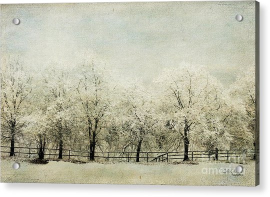 Softly Falling Snow Acrylic Print