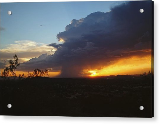Sonoran Desert Thunderstorm Acrylic Print