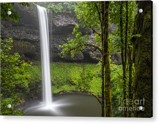 South Falls In Silver Falls State Park Acrylic Print