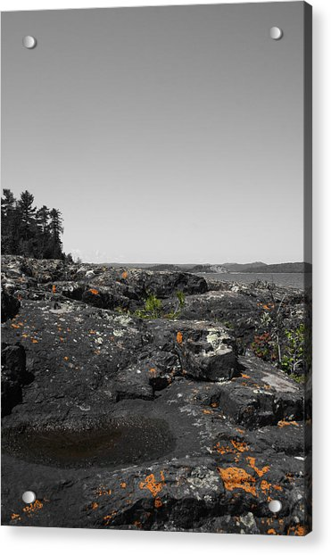 Spotted Rocks Acrylic Print