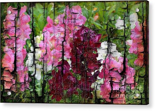 Spring Garden H131716 Acrylic Print