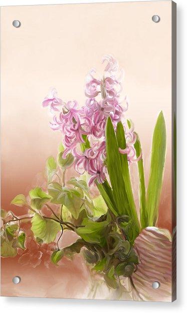 Spring Hyacinth Acrylic Print