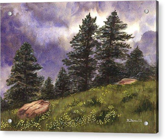 Spring Storm Acrylic Print