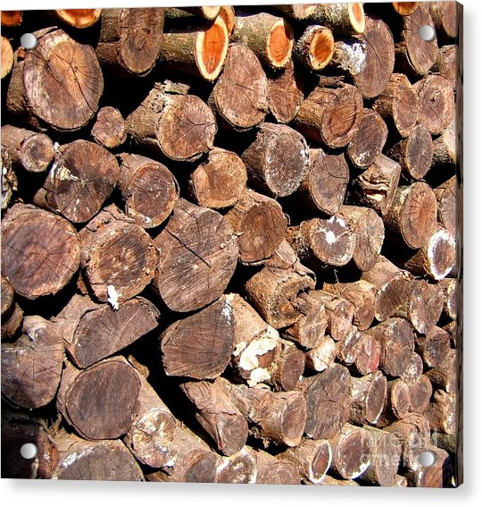 Stacked Tree Logs Acrylic Print
