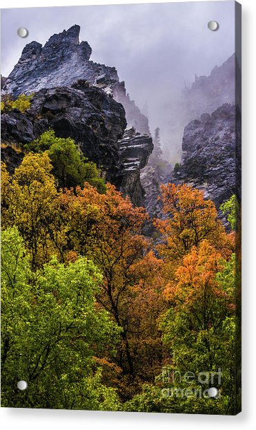 Stormy American Fork Canyon - Wasatch - Utah Acrylic Print