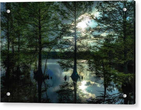 Stumpy Lake Acrylic Print