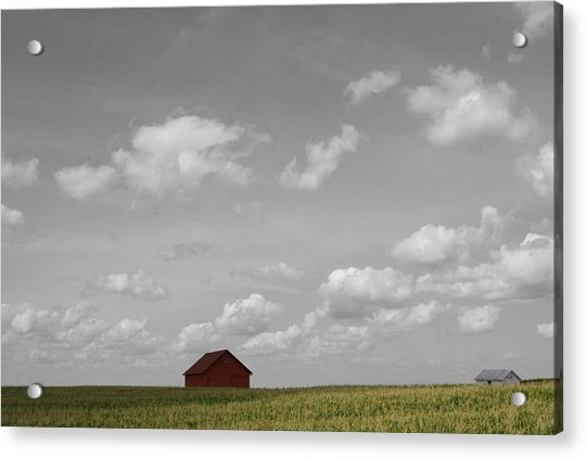 Summer Fields II Acrylic Print