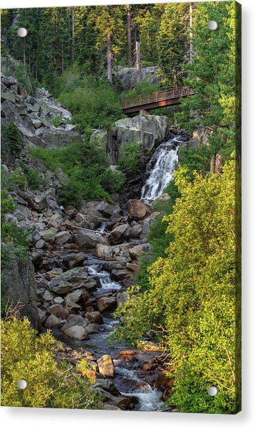 Summer Waterfall Acrylic Print