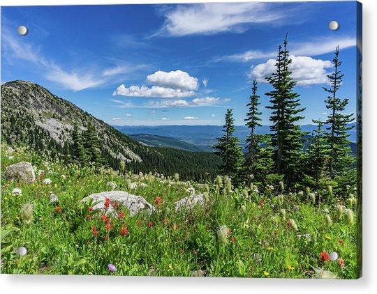 Summer Wildflowers On Big White Acrylic Print