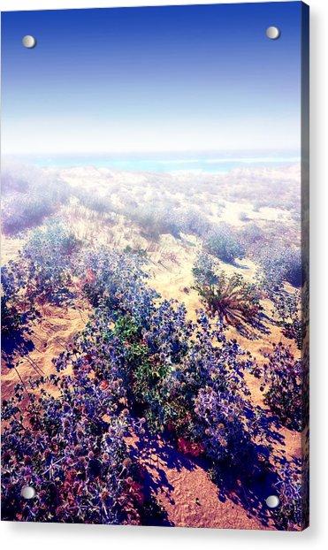 Sun And Wind Acrylic Print