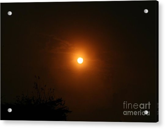 Acrylic Print featuring the photograph Sunrise  by Cynthia Marcopulos