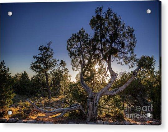 Sunset At The Grand Canyon Acrylic Print