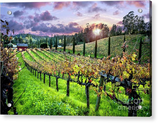 Sunset At The Palmers Acrylic Print