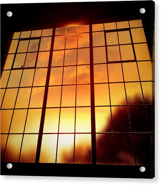 Tall Windows #1 Acrylic Print by Maxim Tzinman