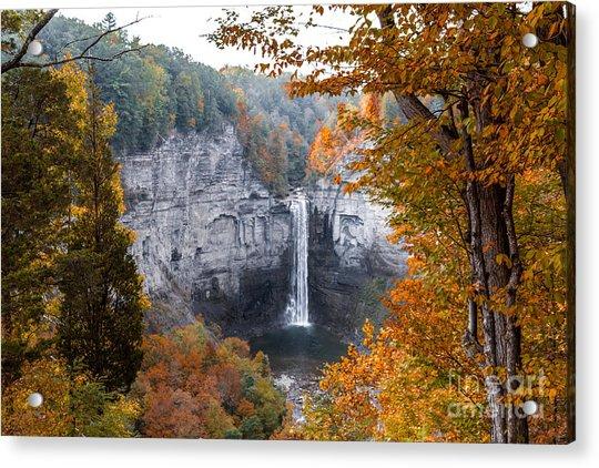 Taughannock Autumn Acrylic Print