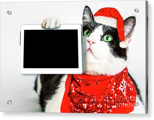 Technology Christmas Cat Acrylic Print