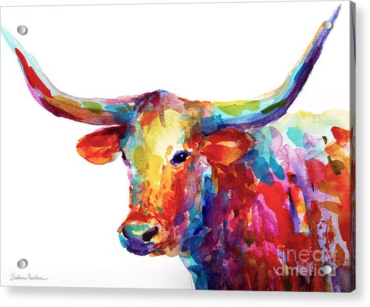 Texas Longhorn Art Acrylic Print